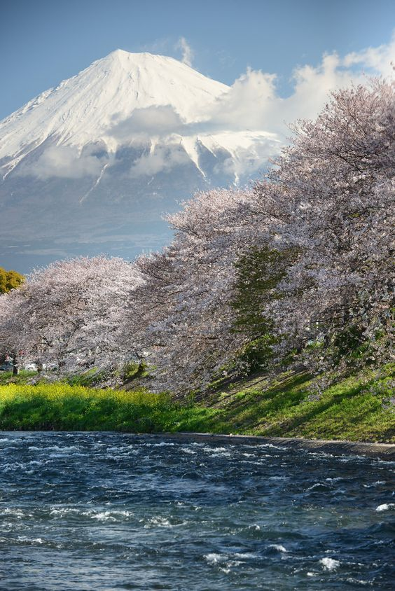 View of Mt. Fuji. Japan