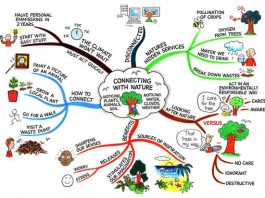 Mind Map. Tony Busen