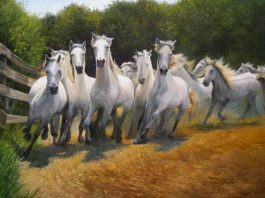 Irina Popova. White herd. Enhancing creativity